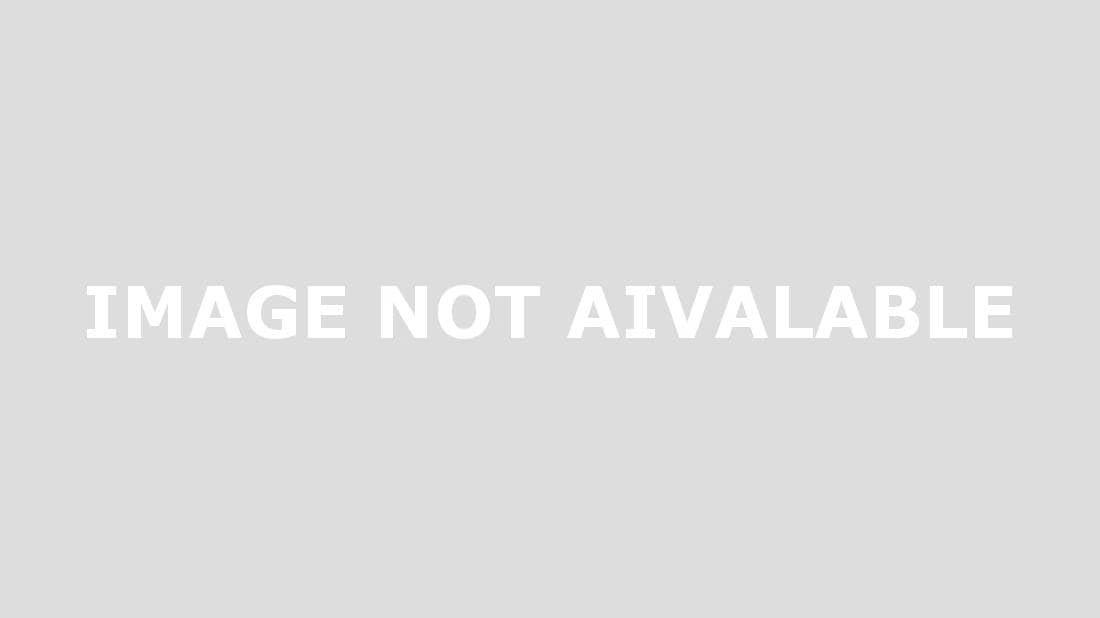 GEKO Bird immagine 1