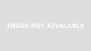 Geko Party immagine 2